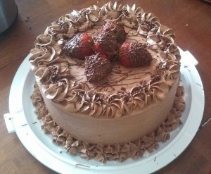 Chocolate Iced Plain Cake